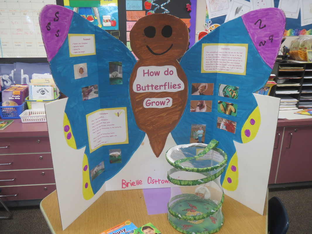 kinder science projects If you are looking for some interesting kindergarten science experiments then just keep reading this article will give you information on some of the easiest science experiments which will help your kid to understand its surrounding in a very simple way.
